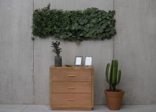 4 dicas para criar jardins verticais em casa