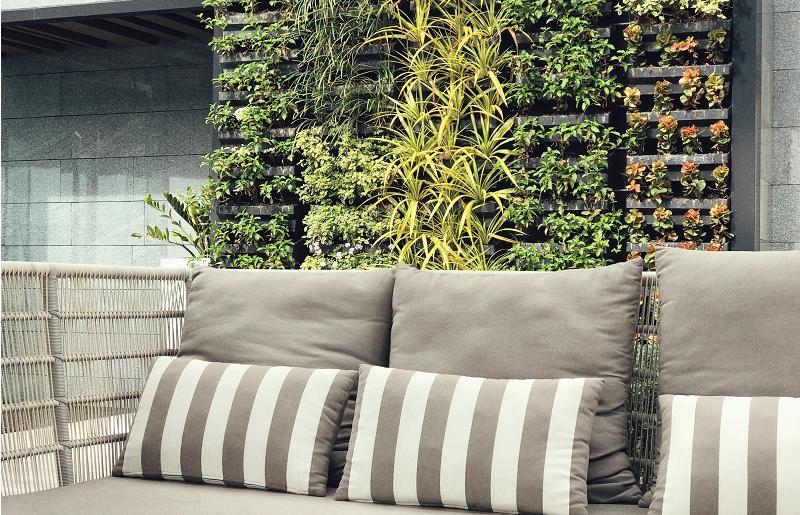Jardins verticais para área externa