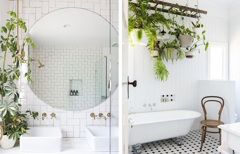 Banheiros modernos - banheiro selva