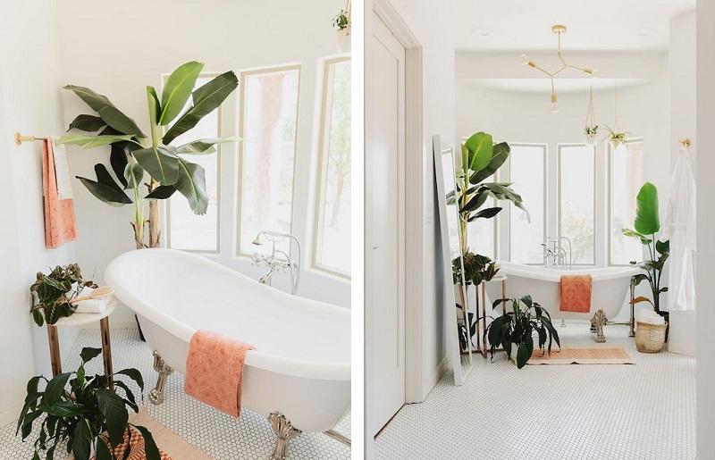 Banheiro branco - Plantas