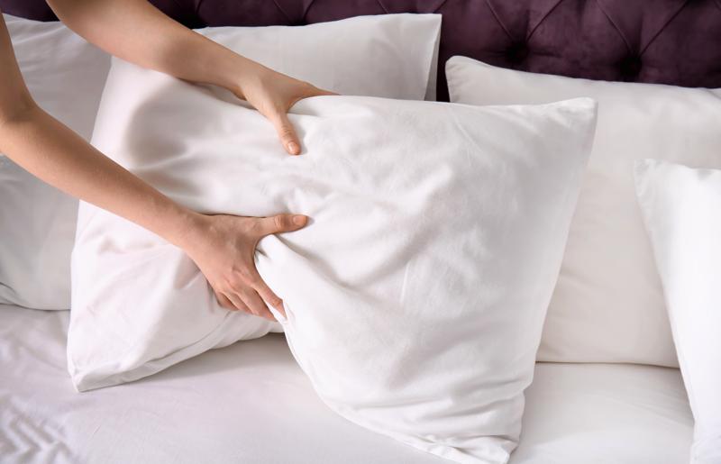 protetor de travesseiro mais conforto, higiene, conforto,