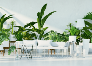 urban-jungle-blog-decoracao-plantas-em-casa