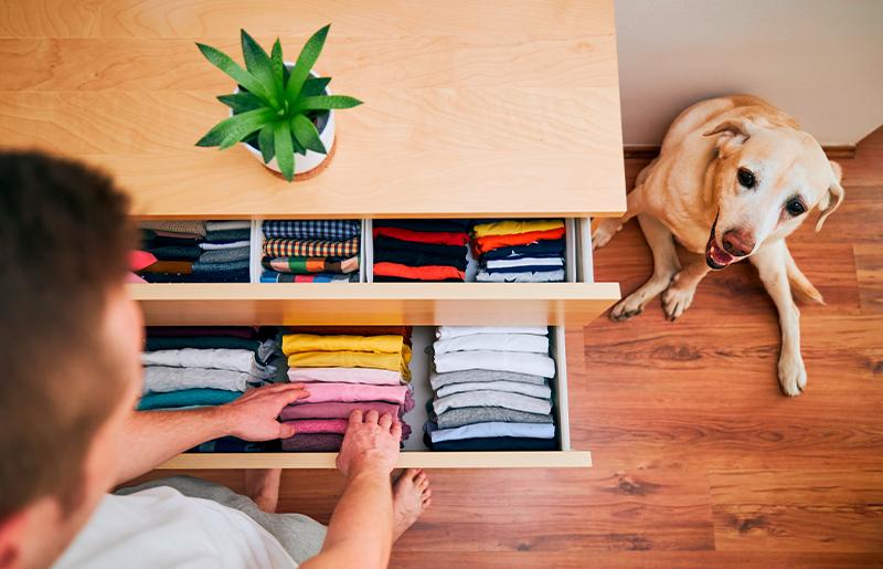 Organize suas gavetas