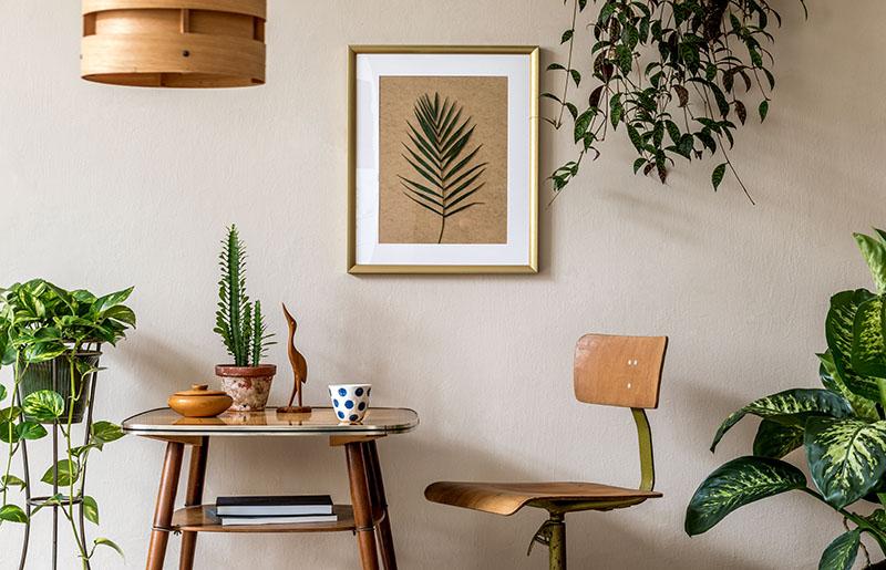 Hall com plantas